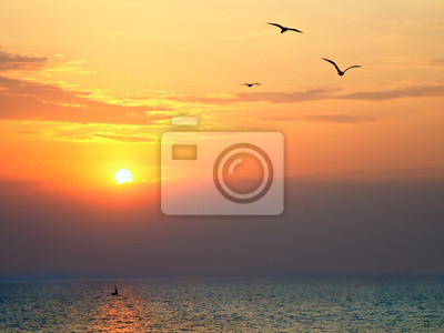 Sunset at sea with seagulls in foreground