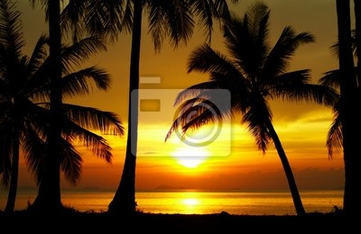 sunset equator