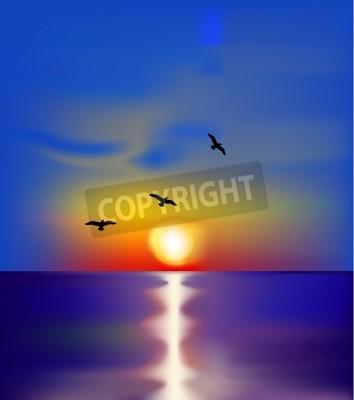 Sunset on sea with birds  Vector
