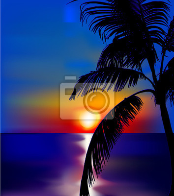 Sunset on sea with palm. Vector