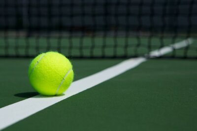 Canvas print Tennis Ball with Net in the Background