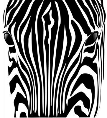 test zebra