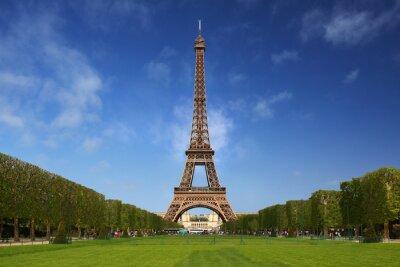 Canvas print The Eiffel Tower in Paris