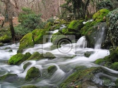 the fantastic river