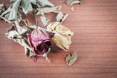 Canvas print The last valentine rose.