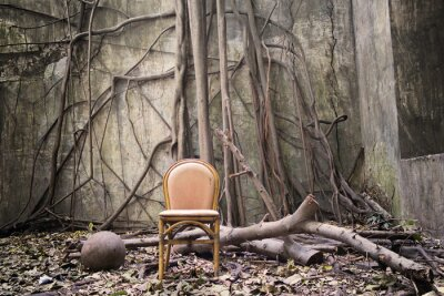 Canvas print The roots, the old chair and the ruined wall