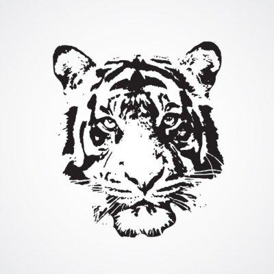 Canvas print tigre