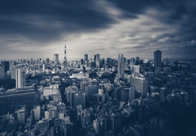 Canvas print Tokyo city view and Tokyo Tower in dark tone