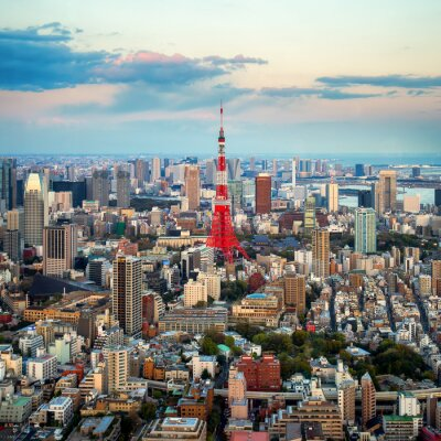 Canvas print Tokyo city view visible on the horizon