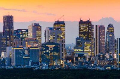 Canvas print  Tokyo Skyline at Twilight