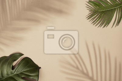 Canvas print Top view of green tropical leaves and shadow on sand color background. Flat lay. Minimal summer concept with palm tree leaf. Creative copyspace.