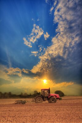 Canvas print Tractor in the field