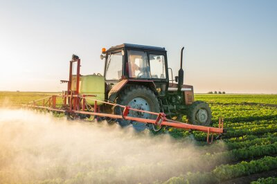 Canvas print Tractor spraying soybean