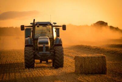 Canvas print tractor sunset harvest