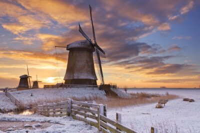 Canvas print Traditional Dutch windmills in winter at sunrise