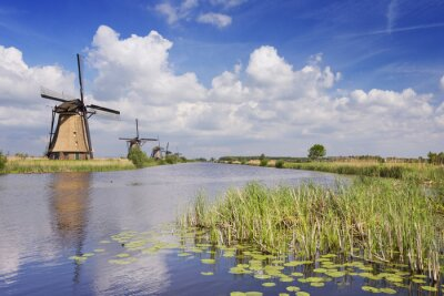 Canvas print Traditional Dutch windmills on a sunny day at the Kinderdijk