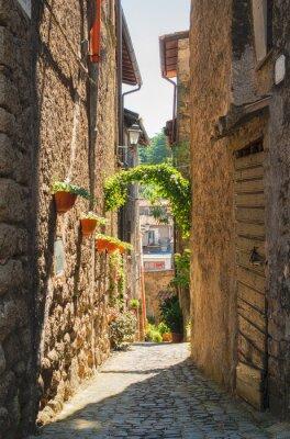 Canvas print Traditional Italian homes