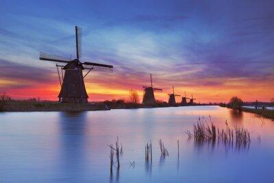 Canvas print Traditional windmills at sunrise, Kinderdijk, The Netherlands