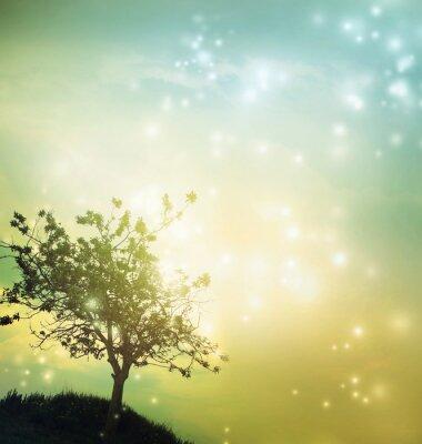 Canvas print Tree silhouette at twilight