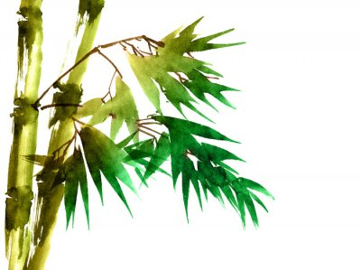 Canvas print Tropical bamboo with leaves