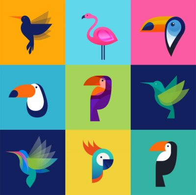 Canvas print Tropical birds - set of vector icons