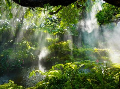 Canvas print Tropical jungle with river and sun  beam  and foggy in the garden