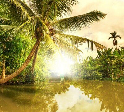 Canvas print Tropical river