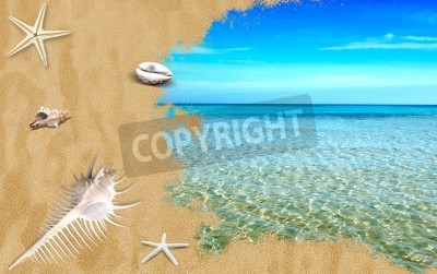 Tropical sea with beach sand and shells