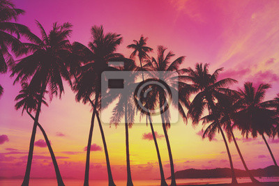 Tropical sunset over sea with palm trees
