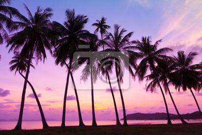Tropical sunset over sea with palm trees, Thailand