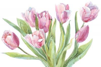 Canvas print Tulips bouquet watercolor illustration