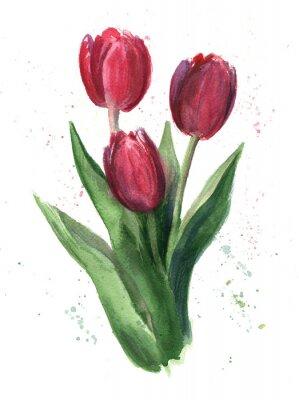 Canvas print Tulips, watercolor