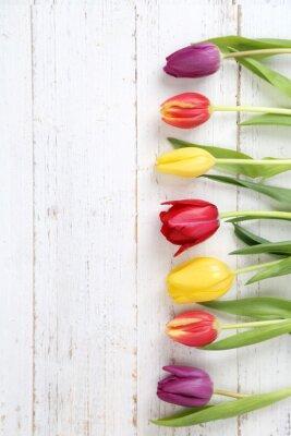 Canvas print Tulpenhintergrund