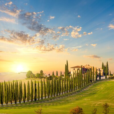 Canvas print Tuscany at sundown - countryside road with trees and house