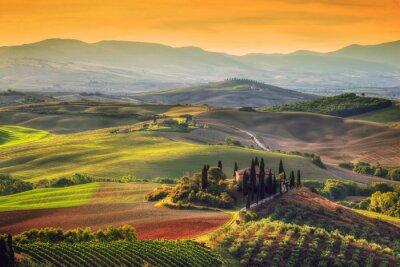 Canvas print Tuscany landscape at sunrise. Tuscan farm house, vineyard, hills.