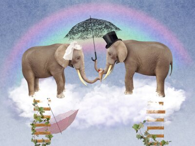 Canvas print Two elephants in love with umbrellas.