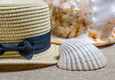 vacation still life with straw hat and sea shells