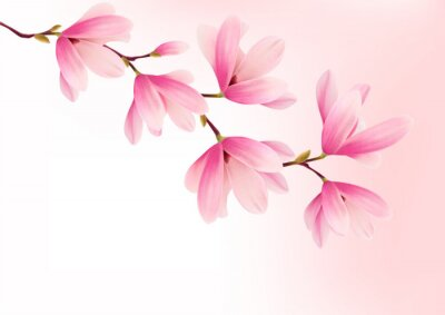 Canvas print Valentine background with pink flowers. Vector.