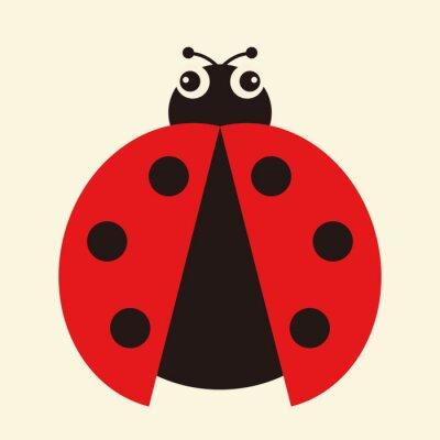 Canvas print Vector illustration of a ladybug