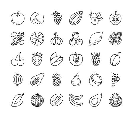 Vector line icon set. Fruits, berries and nuts. Healthy vegetarian food. Apple, cherry, orange, lemon, walnut, hazelnut, avocado, pineapple, strawberry, raspberry, blueberry. Isolated on white backgro