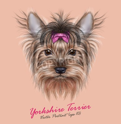 Canvas print Vector Portrait of a Domestic Dog. Cute head of Yorkshire Terrier on ping background.