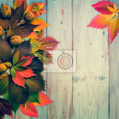 Vintage autumn time: red vine leaves and walnuts.