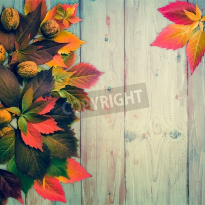 Vintage autumn time: red vine leaves and walnuts.Wooden background with copy space.