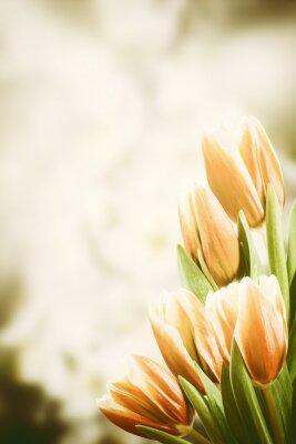 Canvas print Vintage Postcard with Tulip Flowers
