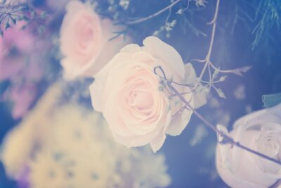 Canvas print Vintage rose flower bouquet soft background