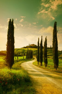 Canvas print Vintage Tuscany countryside landscape
