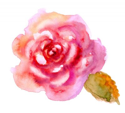 Canvas print Vintage watercolor bright red rose