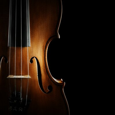 Canvas print Violin orchestra musical instruments