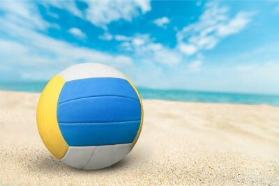Canvas print Volleyball.