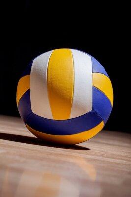 Canvas print Volleyball, Indoor Volleyball, Indoors.